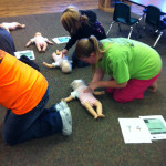 CPR Class 2