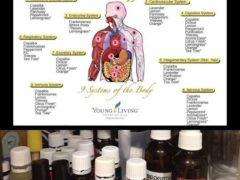 Love my YL oils :)