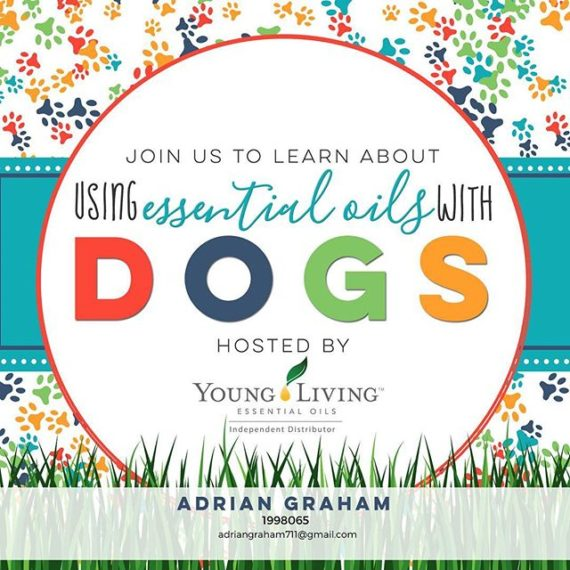 I'm running some info on using EO's with and around your Favorite 🐕  . Let me know if you'd like an invite.  #learningtolivefree #bestfriend #livefree